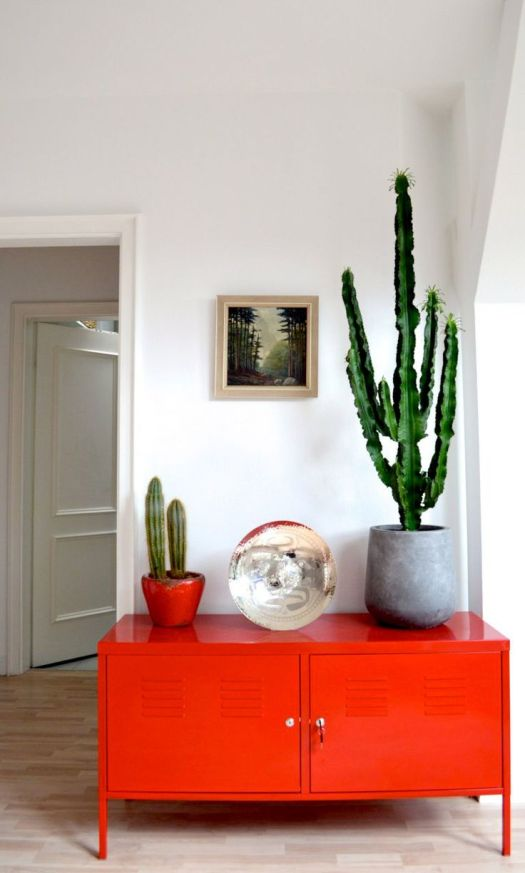 cacti and red cabinet domaine